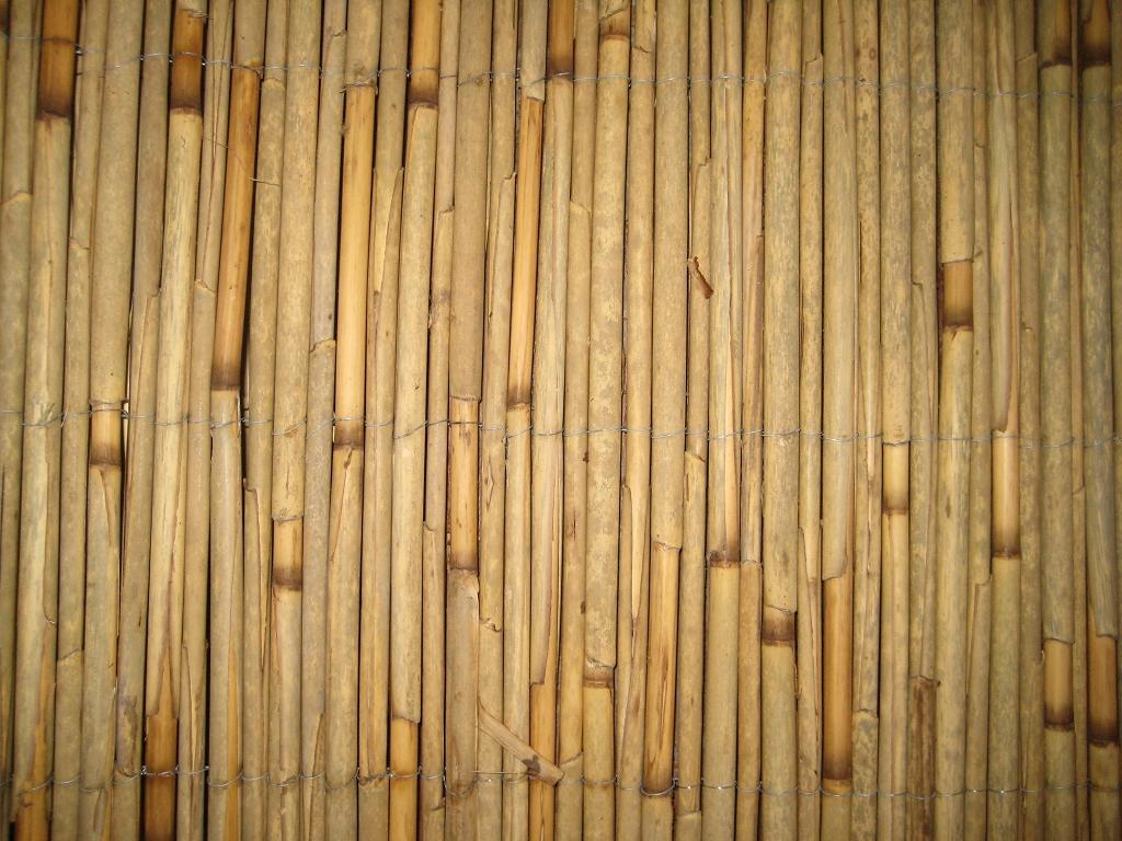 Schilfrohrmatten 180x600 Gunstig Kaufen Sichtschutz Natur Pro
