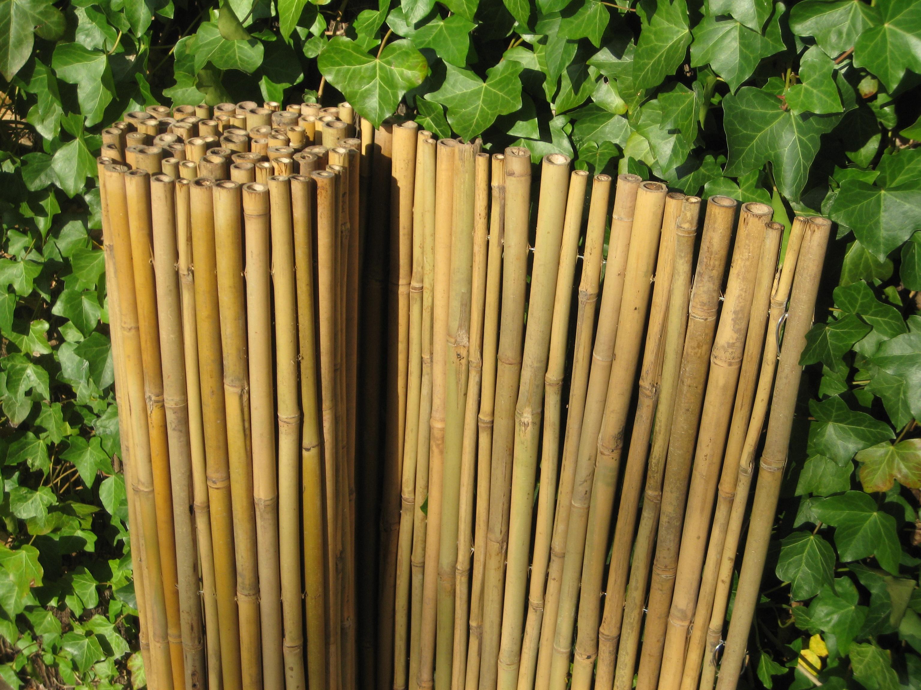 sichtschutz bambusmatte sichtschutzmatte hell handel und vertrieb natur pro kastanie shop. Black Bedroom Furniture Sets. Home Design Ideas