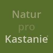Natur-pro-Kastanie