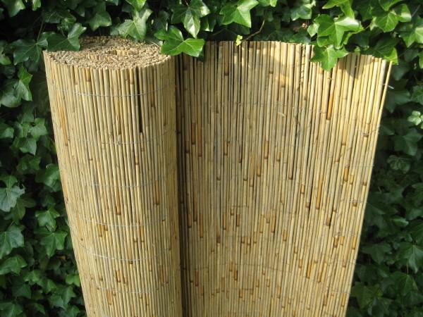 Schilfrohrmatte - 200 cm hoch x 600 cm lang - Sichtschutz