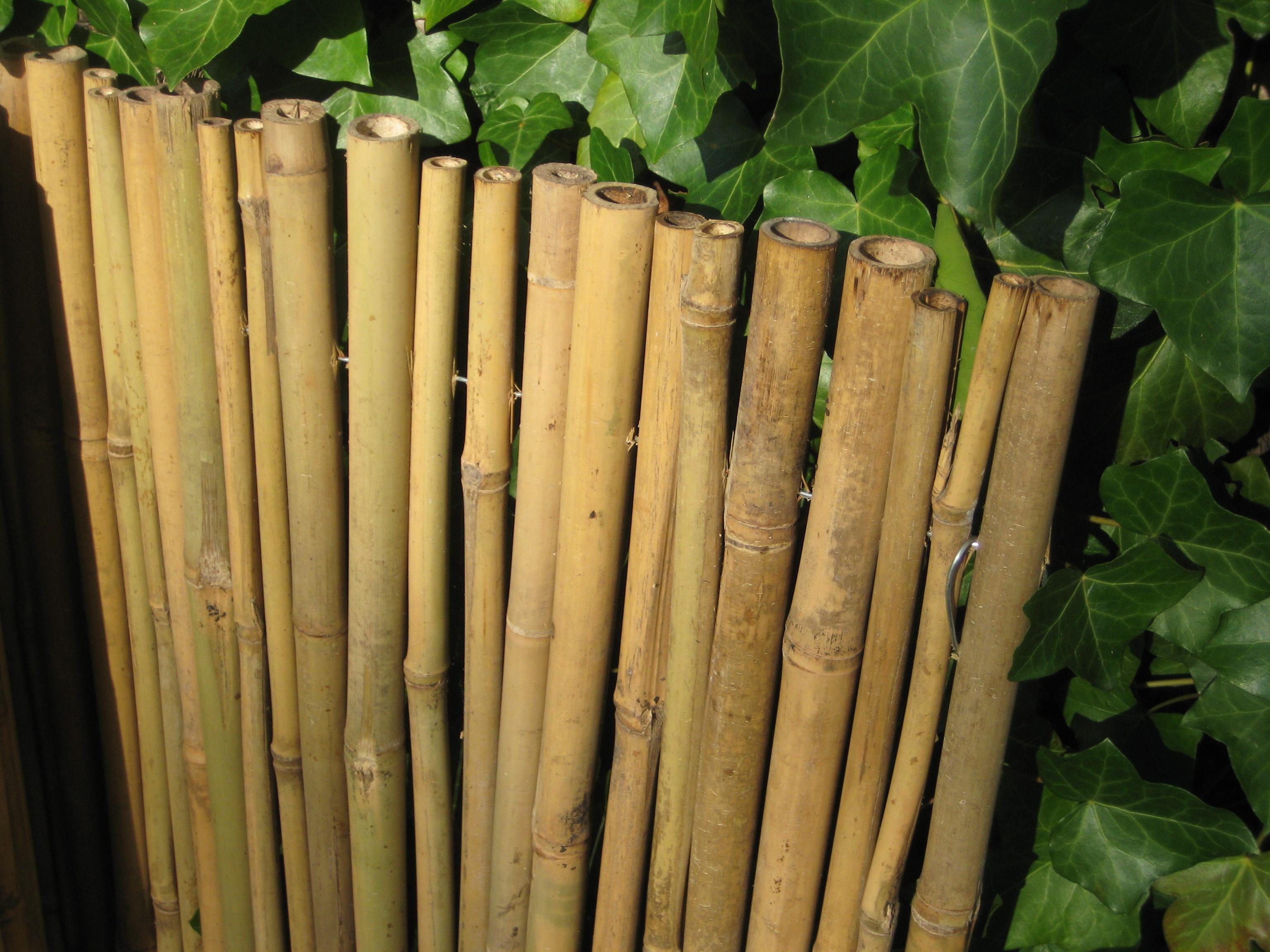 Sichtschutz Bambusmatte Sichtschutzmatte hell Handel und
