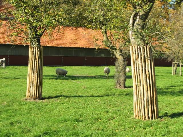 staketenzaun 120 cm h 5 m l za 4 5 cm franz sischer rollzaun aus kastanienholz 120 cm. Black Bedroom Furniture Sets. Home Design Ideas